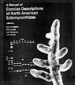 EctomycorrhizaeManual